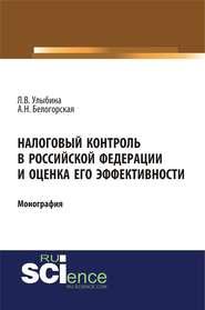 Налоговый контроль в Российской Федерации и оценка его эффективности