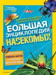 Большая энциклопедия насекомых