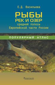 Рыбы рек и озёр средней полосы Европейской части России