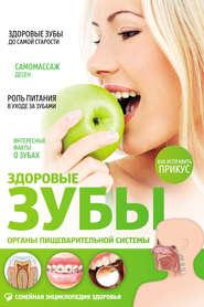 Здоровые зубы. Органы пищеварительной системы
