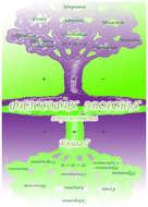 Учебник развития сознания. Вопросы и ответы. Книга 7. Философия здоровья