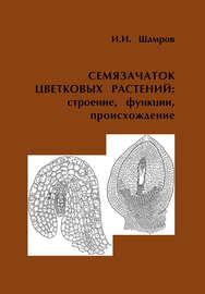 Семязачаток цветковых растений: строение, функции, происхождение