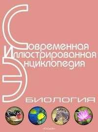 Энциклопедия «Биология» (без иллюстраций)