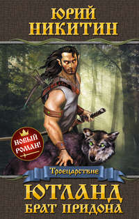 Купить книгу Ютланд, брат Придона, автора Юрия Никитина