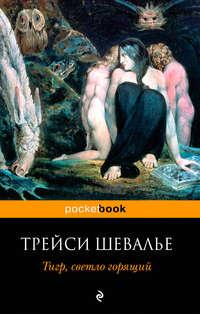 Книга Тигр, светло горящий - Автор Трейси Шевалье