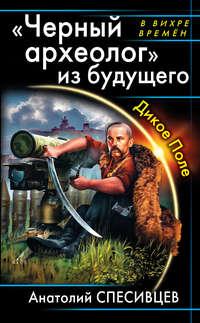 Купить книгу «Черный археолог» из будущего. Дикое Поле, автора Анатолия Спесивцева