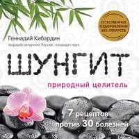 Книга Шунгит: Природный целитель - Автор Геннадий Кибардин
