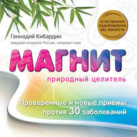 Книга Магнит: Природный целитель - Автор Геннадий Кибардин