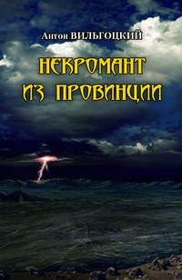 Купить книгу Некромант из провинции, автора Антона Вильгоцкого