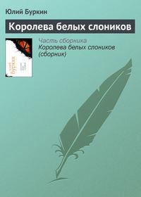 Купить книгу Королева белых слоников, автора Юлия Буркина