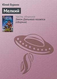 Купить книгу Мелкий, автора Юлия Буркина