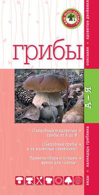 Купить книгу Грибы, автора Михаила Вишневского