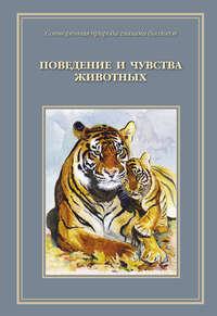 Купить книгу Сотворенная природа глазами биологов. Поведение и чувство животных, автора Т. Д. Ждановой