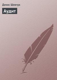 Книга Аудит - Автор Денис Шевчук