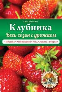 Купить книгу Клубника. Весь сезон с урожаем!, автора Анны Беляковой