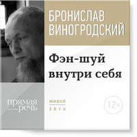 Купить книгу Лекция «Фэн-шуй внутри себя», автора Бронислава Виногродского