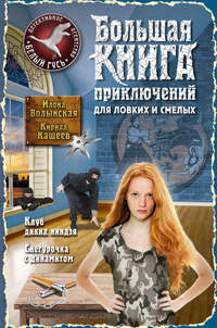 Купить книгу Большая книга приключений для ловких и смелых (сборник), автора Илоны Волынской