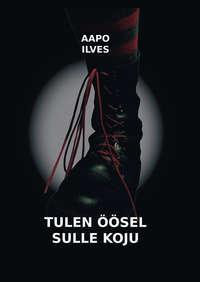 Купить книгу Tulen öösel sulle koju, автора