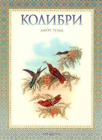 Купить книгу Колибри, автора Евгения Коблика