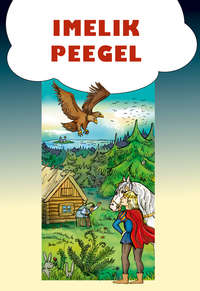 Купить книгу Imelik peegel, автора