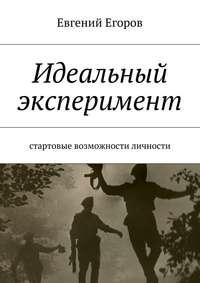 Книга Идеальный эксперимент. Стартовые возможности личности - Автор Евгений Егоров