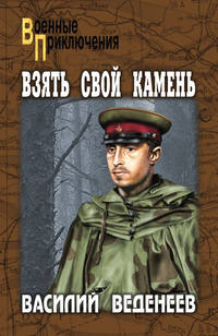 Купить книгу Взять свой камень, автора Василия Веденеева
