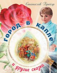 Купить книгу Город в капле и другие сказки, автора Станислава Брейэра