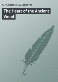 Книга The Heart of the Ancient Wood