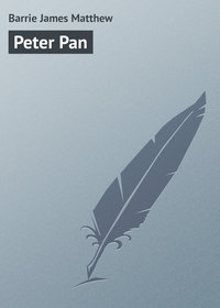 Купить книгу Peter Pan, автора