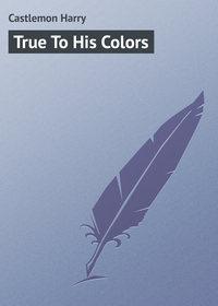 Купить книгу True To His Colors, автора