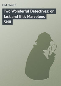 Купить книгу Two Wonderful Detectives: or, Jack and Gil's Marvelous Skill, автора