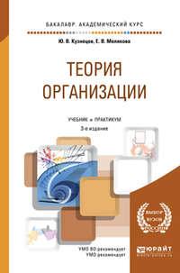 Теория организации 3-е изд., пер. и доп. Учебник и практикум для академического бакалавриата