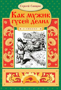 Книга Как мужик гусей делил - Автор Сергей Сапцов
