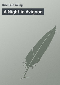 Книга A Night in Avignon