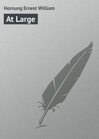 Книга At Large