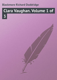 Книга Clara Vaughan. Volume 1 of 3