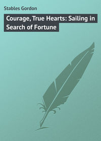Книга Courage, True Hearts: Sailing in Search of Fortune