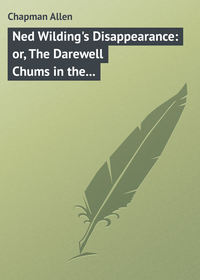 Ned Wilding's Disappearance: or, The Darewell Chums in the City