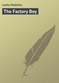 Книга The Factory Boy