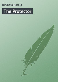Книга The Protector