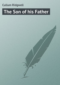 Книга The Son of his Father