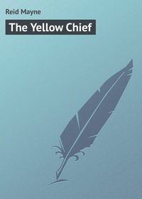 Книга The Yellow Chief