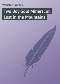 Книга Two Boy Gold Miners: or, Lost in the Mountains