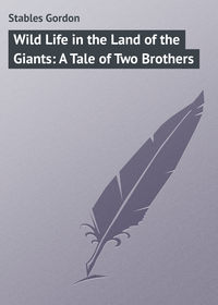 Книга Wild Life in the Land of the Giants: A Tale of Two Brothers