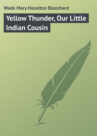 Книга Yellow Thunder, Our Little Indian Cousin