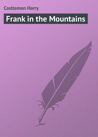 Книга Frank in the Mountains