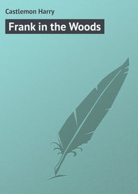 Купить книгу Frank in the Woods, автора