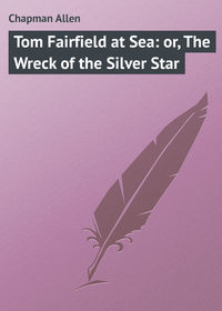 Tom Fairfield at Sea: or, The Wreck of the Silver Star