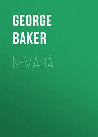 Купить книгу Nevada, автора