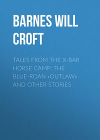 Купить книгу Tales from the X-bar Horse Camp: The Blue-Roan «Outlaw» and Other Stories, автора